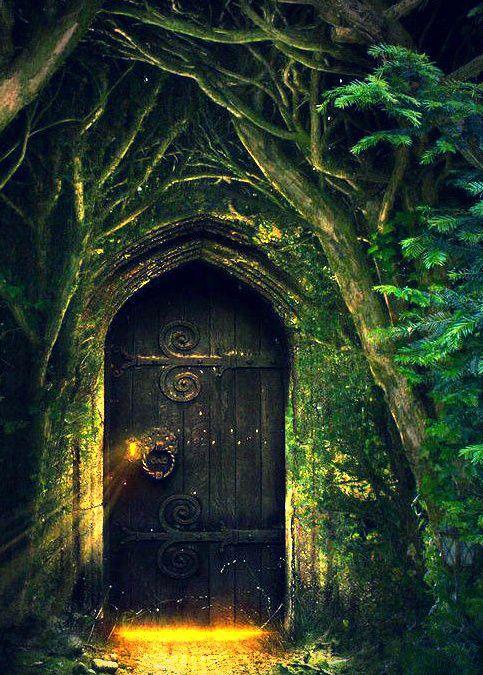 Enchanted Forest Club (Fall)