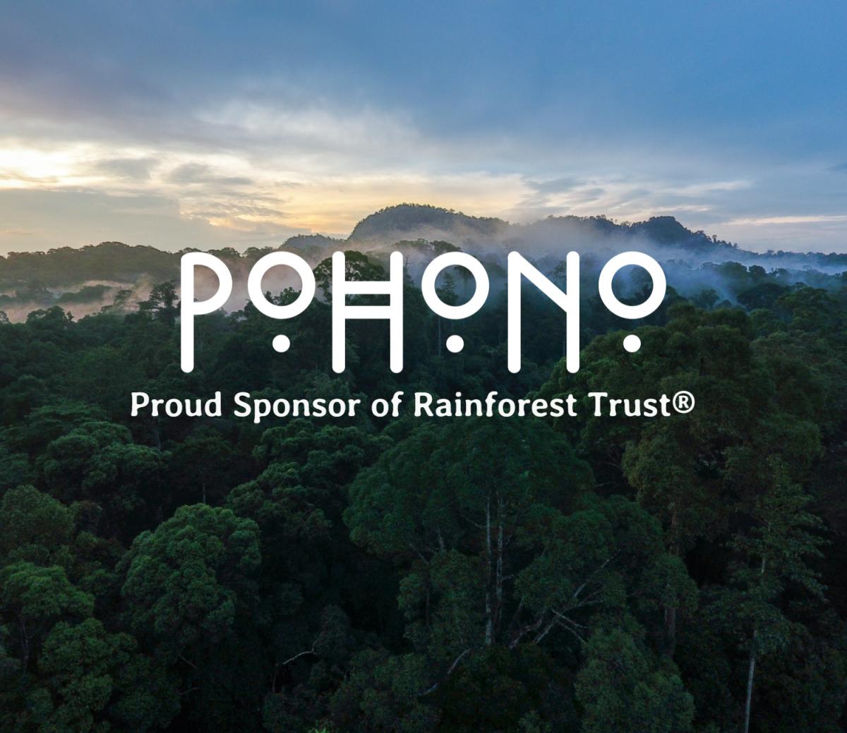 Rainforest overlay for marketing 2
