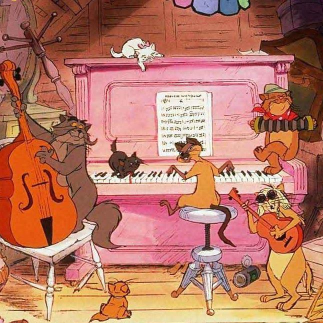 The Cat Club Camp